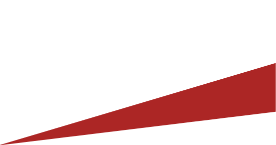 Vectre Consulting